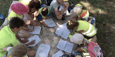 Vaikų dienos stovykla 08.26-30 dienomis!